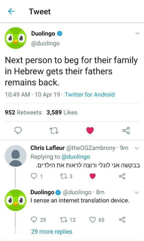 An Internet: KTweet  Duolingo  @duolingo  Next person to beg for their family  in Hebrew gets their fathers  remains back  10:49 AM 10 Apr 19 Twitter for Android  952 Retweets 3,589 Likes  Chris Lafleur @theOGZambrony 9m  Replying to @duolingo  .הילדיםאת לראות ורוצה לונלי אנו בבקשה  Duolingo @duolingo 8m  sense an internet translation device.  929 ta 12  29 more replies  65