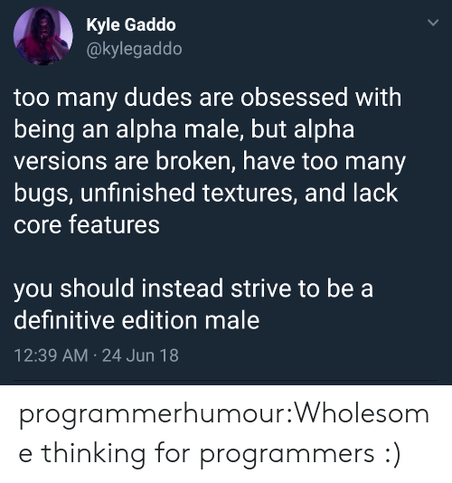 textures: Kyle Gaddo  @kylegaddo  too many dudes are obsessed with  being an alpha male, but alpha  versions are broken, have too many  bugs, unfinished textures, and lack  core features  you should instead strive to be a  definitive edition male  12:39 AM 24 Jun 18  > programmerhumour:Wholesome thinking for programmers :)