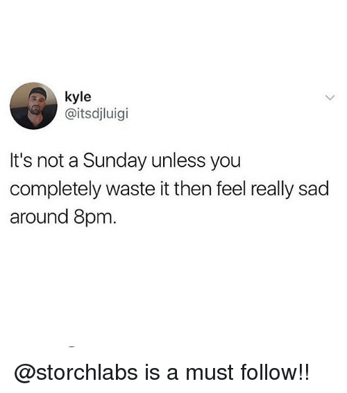 Memes, Sunday, and Sad: kyle  @itsdjluigi  It's not a Sunday unless you  completely waste it then feel really sad  around 8pm @storchlabs is a must follow!!