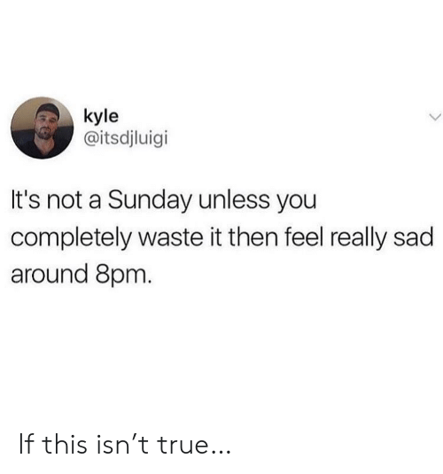 A Sunday: kyle  @itsdjluigi  It's not a Sunday unless you  completely waste it then feel really sad  around 8pm. If this isn't true…