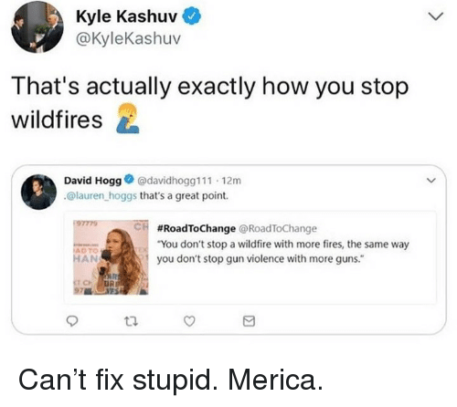 """Guns, Memes, and 🤖: Kyle Kashuv  @KyleKashuv  That's actually exactly how you stop  wildfires  David Hogg@davidhogg111 12m  @lauren hoggs that's a great point.  97779  CH  #RoadToChange @RoadToChange  """"You don't stop a wildfire with more fires, the same way  you don't stop gun violence with more guns.""""  ADTO  HAN Can't fix stupid. Merica."""