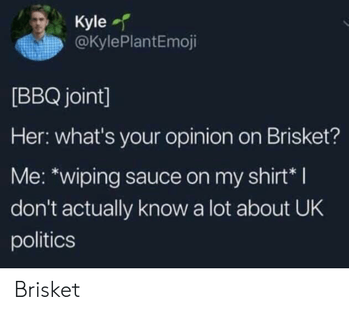 wiping: Kyle  @KylePlantEmoji  [BBQ joint]  Her: what's your opinion on Brisket?  Me: *wiping sauce on my shirt*I  don't actually know a lot about UK  politics Brisket
