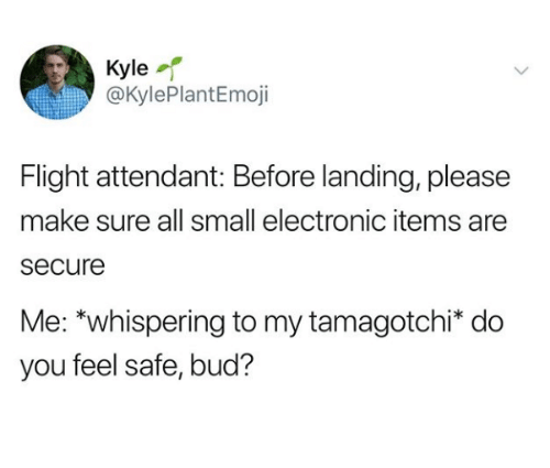 Flight, Flight Attendant, and Tamagotchi: Kyle  @KylePlantEmoji  Flight attendant: Before landing, please  make sure all small electronic items are  secure  Me: *whispering to my tamagotchi* do  you feel safe, bud?