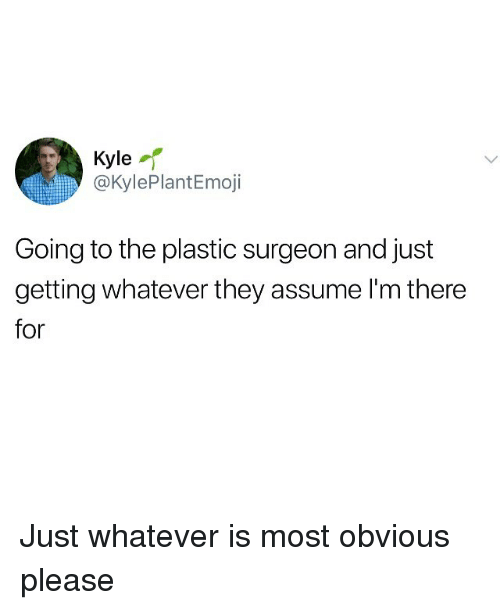 Im There: Kyle  @KylePlantEmoji  Going to the plastic surgeon and just  getting whatever they assume I'm there  for Just whatever is most obvious please