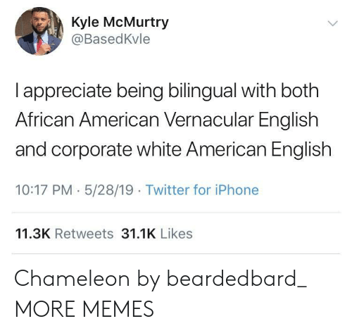 african american: Kyle McMurtry  @BasedKvle  I appreciate being bilingual with both  African American Vernacular English  and corporate white American English  10:17 PM 5/28/19 Twitter for iPhone  11.3K Retweets 31.1K Likes Chameleon by beardedbard_ MORE MEMES