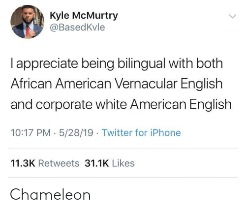 african american: Kyle McMurtry  @BasedKvle  I appreciate being bilingual with both  African American Vernacular English  and corporate white American English  10:17 PM 5/28/19 Twitter for iPhone  11.3K Retweets 31.1K Likes Chameleon