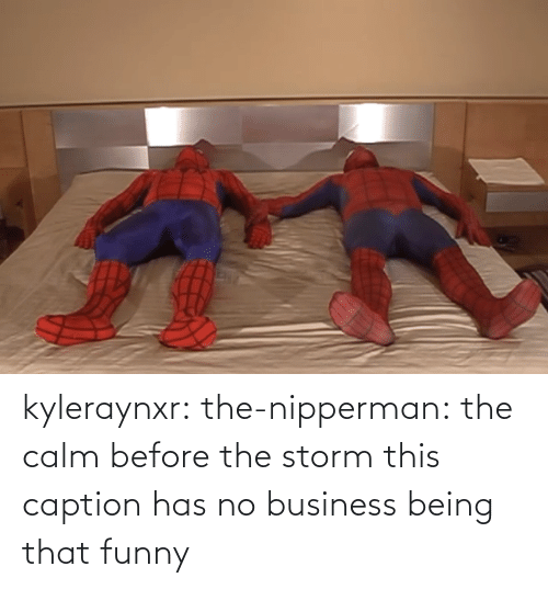storm: kyleraynxr: the-nipperman: the calm before the storm this caption has no business being that funny