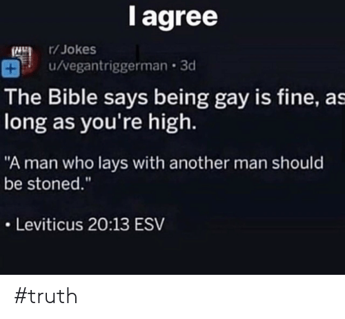 """leviticus: l agree  /Jokes  u/vegantriggerman 3d  The Bible says being gay is fine, as  long as you're high.  """"A man who lays with another man should  be stoned.""""  Leviticus 20:13 ESV #truth"""