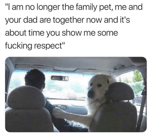 """Me Some: """"l am no longer the family pet, me and  your dad are together now and it's  about time you show me some  fucking respect"""""""