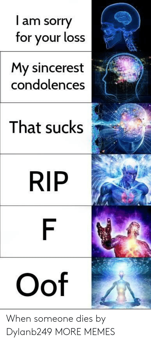 Condolences: l am sorry  for your loss  My sincerest  condolences  That sucks  RIP  Oof When someone dies by Dylanb249 MORE MEMES