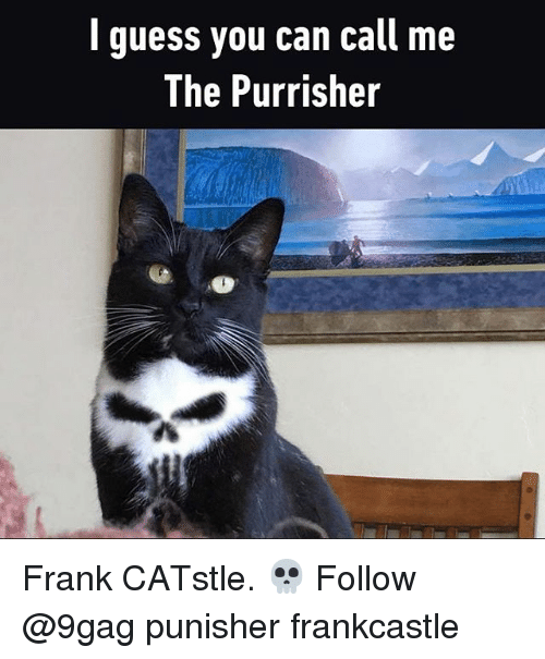 Punisher: l guess you can call me  The Purrisher Frank CATstle. 💀 Follow @9gag punisher frankcastle