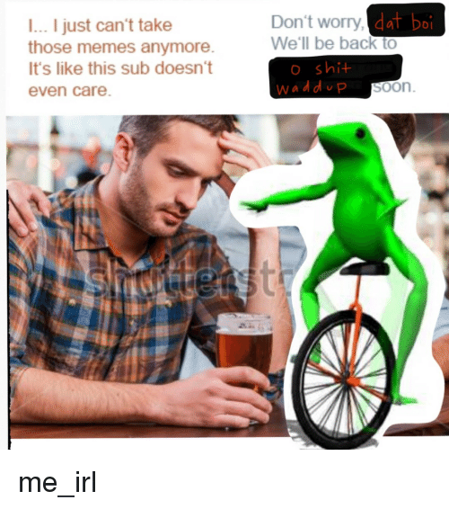 Meme, Memes, and Soon...: l... I just can't take  those memes anymore.  It's like this sub doesn't  even Care  dat boi  Don't worry,  We'll be back to  shi  SOOn me_irl