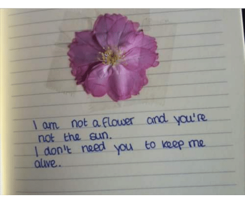 Naed: l om not a Flower and yau'R  not the eun  I don'e naed  aluve  you to keep me.