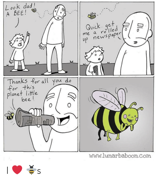 Lunarbaboon: L ook dad!  A BEE!  Quick.. qet  ViC  me a ro T  up news paper  0  Thanks for all You do  for this  lanet litle  bee!  0  www.lunarbaboon.com I ❤️ 🐝s