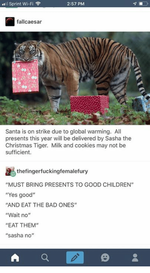 """sasha: l Sprint Wi-Fi  2:57 PM  fallcaesar  Santa is on strike due to global warming. All  presents this year will be delivered by Sasha the  Christmas Tiger. Milk and cookies may not be  sufficient.  thefingerfuckingfemalefury  """"MUST BRING PRESENTS TO GOOD CHILDREN""""  """"Yes good""""  AND EAT THE BAD ONES""""  """"Wait no""""  """"EAT THEM""""  """"sasha no'"""""""
