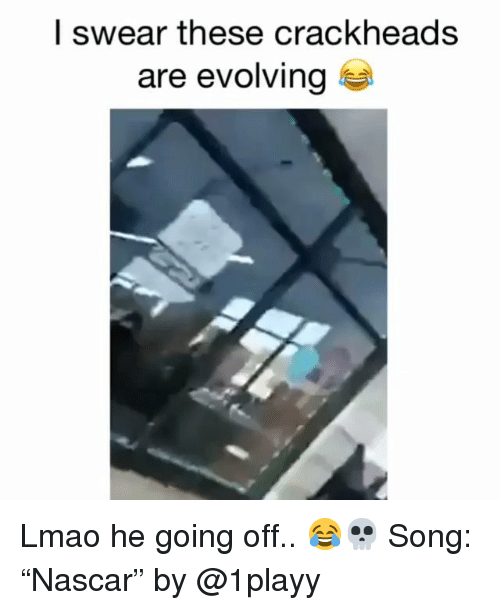 "Funny, Lmao, and Song: l swear these crackheads  are evolving Lmao he going off.. 😂💀 Song: ""Nascar"" by @1playy"
