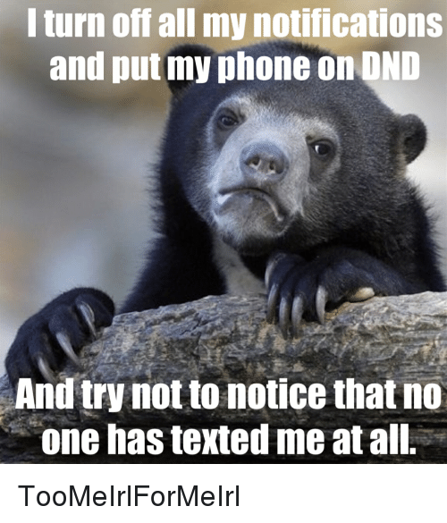 Phone, Bear, and Sad: l turn off all my notifications  and put my phone on OND  And try not to notice that no  one has texted me at all. TooMeIrlForMeIrl