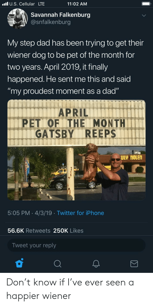 """gatsby: l U.S. Cellular LTE  11:02 AM  Savannah Falkenburg  @snfalkenburg  My step dad has been trying to get their  wiener dog to be pet of the month for  two years. April 2019, it finally  happened. He sent me this and said  """"my proudest moment as a dad""""  APRIL  PET OF ITHE MONTH  GATSBY REEPS  5:05 PM 4/3/19 Twitter for iPhone  56.6K Retweets 250K Likes  Tweet your reply Don't know if I've ever seen a happier wiener"""