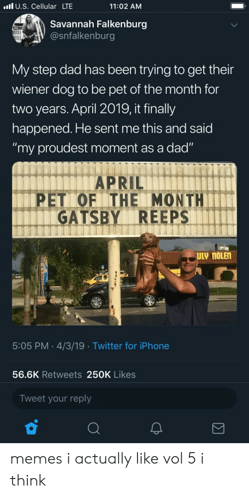 """gatsby: l U.S. Cellular LTE  11:02 AM  Savannah Falkenburg  @snfalkenburg  My step dad has been trying to get their  wiener dog to be pet of the month for  two years. April 2019, it finally  happened. He sent me this and said  """"my proudest moment as a dad""""  APRIL  PET OF ITHE MONTH  GATSBY REEPS  5:05 PM 4/3/19 Twitter for iPhone  56.6K Retweets 250K Likes  Tweet your reply memes i actually like vol 5 i think"""