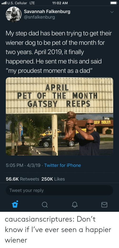 """gatsby: l U.S. Cellular LTE  11:02 AM  Savannah Falkenburg  @snfalkenburg  My step dad has been trying to get their  wiener dog to be pet of the month for  two years. April 2019, it finally  happened. He sent me this and said  """"my proudest moment as a dad""""  APRIL  PET OF ITHE MONTH  GATSBY REEPS  5:05 PM 4/3/19 Twitter for iPhone  56.6K Retweets 250K Likes  Tweet your reply caucasianscriptures: Don't know if I've ever seen a happier wiener"""