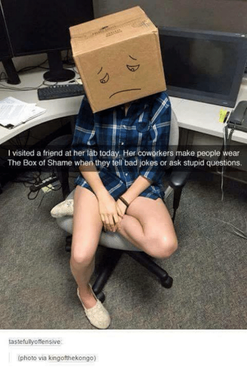 Funny: l visited a friend at her lab today. Her coworkers make people wear  The Box of Shame when they tell bad jokes or ask stupid questions.  tastefullyoffensive:  (photo via kingofthekongo)
