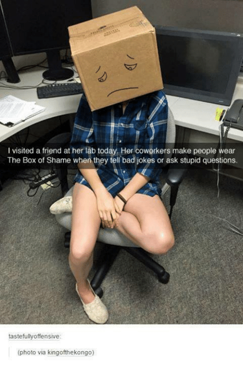 stupid questions: l visited a friend at her lab today, Her coworkers make people wear  The Box of Shame when they tell bad jokes or ask stupid questions.  tastefully offensive  (photo via kingofthekongo)