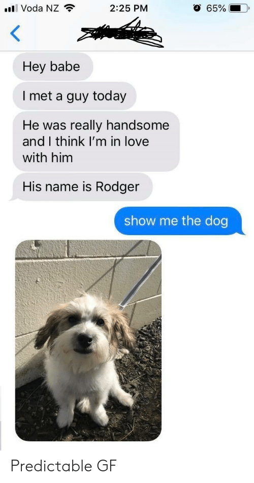 predictable: l Voda NZ  O 65%  2:25 PM  Hey babe  I met a guy today  really handsome  and I think I'm in love  He was  with him  His name is Rodger  show me the dog Predictable GF