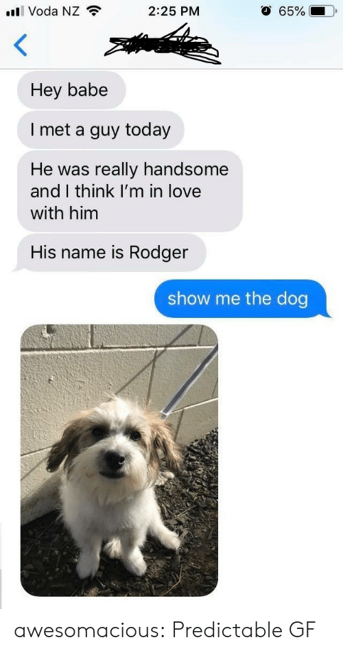 predictable: l Voda NZ  O 65%  2:25 PM  Hey babe  I met a guy today  really handsome  and I think I'm in love  He was  with him  His name is Rodger  show me the dog awesomacious:  Predictable GF