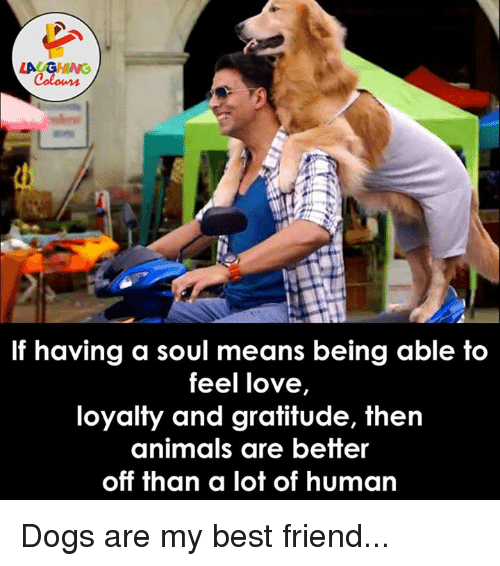 best friend: LA GHNG  If having a soul means being able to  feel love,  loyalty and gratitude, then  animals are better  off than a lot of human Dogs are my best friend...