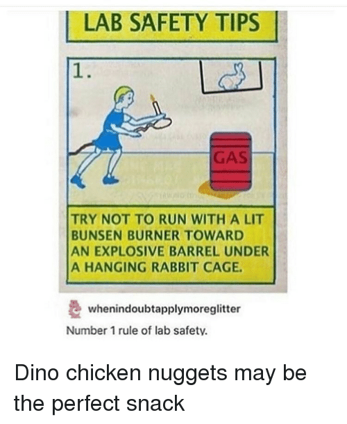 Burners: LAB SAFETY TIPS  TRY NOT TO RUN WITH A LIT  BUNSEN BURNER TOWARD  AN EXPLOSIVE BARREL UNDER  A HANGING RABBIT CAGE.  whenindoubtapplymoreglitter  Number 1 rule of lab safety. Dino chicken nuggets may be the perfect snack