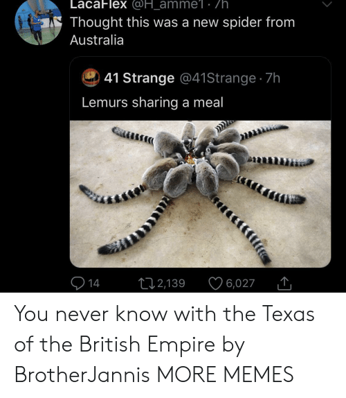 Empire: LacaFlex @H_amme1: /h.  Thought this was a new spider from  Australia  41 Strange @41 Strange 7h  Lemurs sharing a meal  14  2,139  6,027 You never know with the Texas of the British Empire by BrotherJannis MORE MEMES