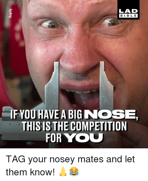 Big Nose: LAD  BIBL E  IF YOU HAVE A BIG NOSE  THIS IS THE COMPETITION  FOR YOU TAG your nosey mates and let them know! 👃😂