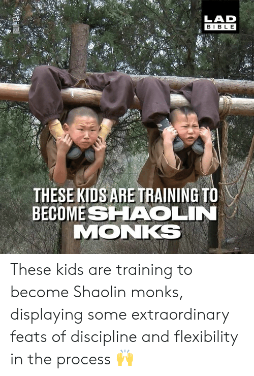 discipline: LAD  BIBL E  THESE KIDS ARE TRAINING TO  BECOME SHAOLIN  MONKS These kids are training to become Shaolin monks, displaying some extraordinary feats of discipline and flexibility in the process 🙌