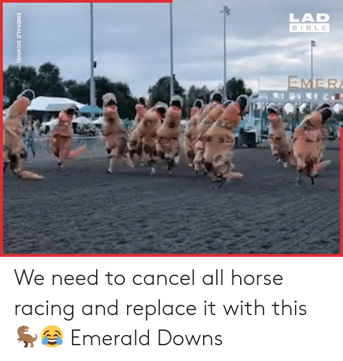 emerald: LAD  BIBLE  EMER  EMERALD  DOWNS] We need to cancel all horse racing and replace it with this 🦖😂  Emerald Downs