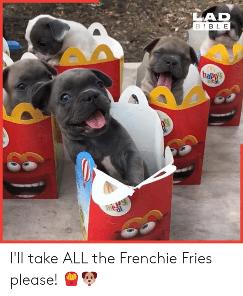 Frenchie: LAD  BIBLE  happy  1Paw  meat I'll take ALL the Frenchie Fries please! 🍟🐶