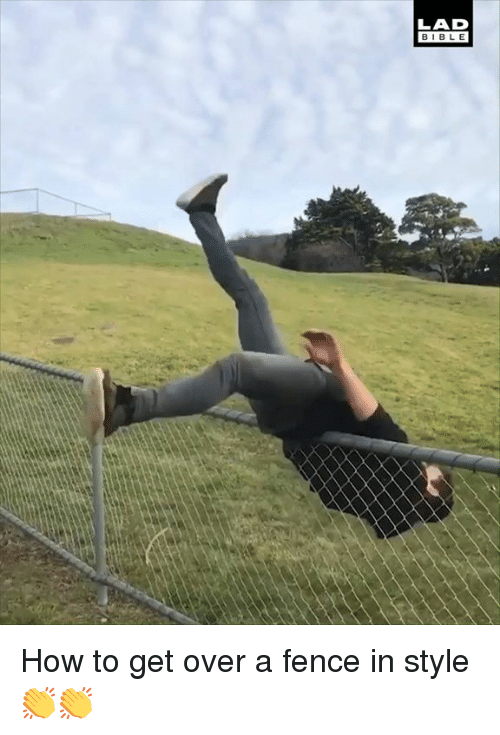 Dank, Bible, and How To: LAD  BIBLE How to get over a fence in style 👏👏