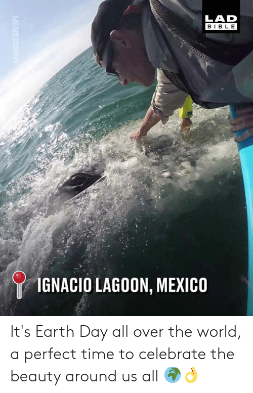 Earth Day: LAD  BIBLE  IGNACIO LAGOON, MEXICO It's Earth Day all over the world, a perfect time to celebrate the beauty around us all 🌍👌