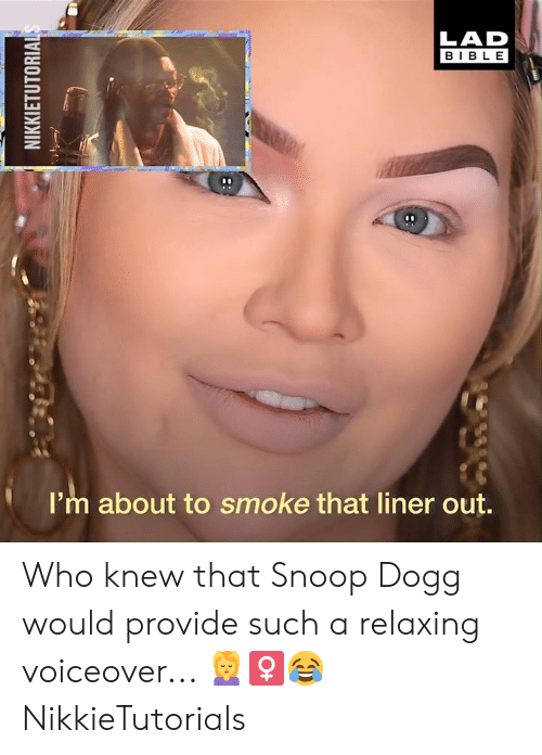 snoop dogg: LAD  BIBLE  I'm about to smoke that liner out. Who knew that Snoop Dogg would provide such a relaxing voiceover... 💆‍♀😂  NikkieTutorials