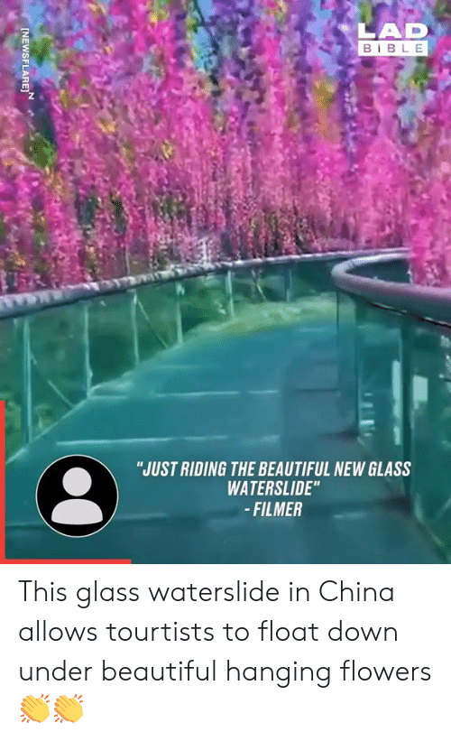 """float: LAD  BIBLE  """"JUST RIDING THE BEAUTIFUL NEW GLASS  WATERSLIDE""""  -FILMER  INEWSFLARE This glass waterslide in China allows tourtists to float down under beautiful hanging flowers 👏👏"""