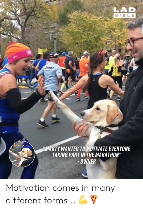 "marathon: LAD  BIBLE  MARTY WANTED TO MOTIVATE EVERYONE  TAKING PART IN THE MARATHON""  OWNER Motivation comes in many different forms... 💪🍕"