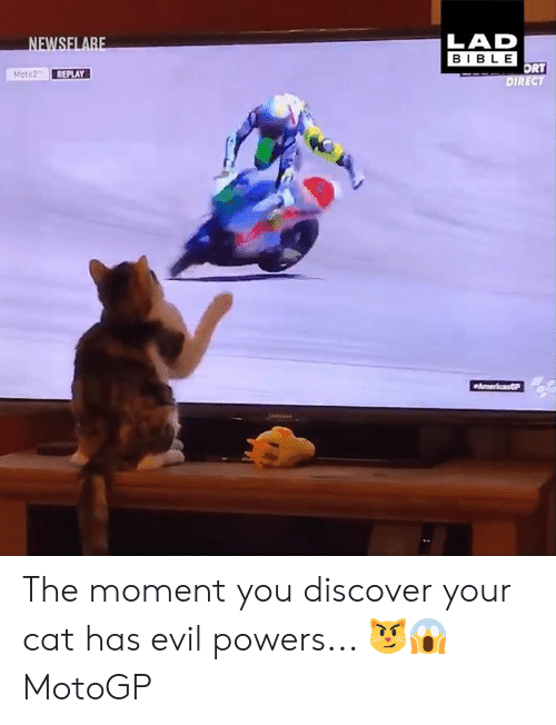 ort: LAD  BIBLE  ORT  DIRECT  Moto2 REPLAY The moment you discover your cat has evil powers... 😼😱  MotoGP