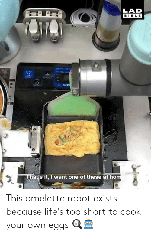 omelette: LAD  BIBLE  San  ni  tis it, I want one of these at ho This omelette robot exists because life's too short to cook your own eggs 🍳🤖