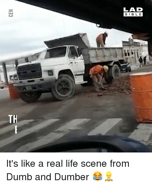 Dumb, Life, and Memes: LAD  BIBLE  TH It's like a real life scene from Dumb and Dumber 😂👷