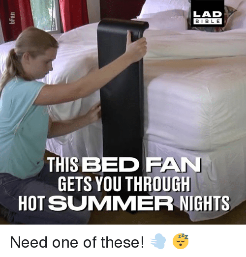 Memes, Summer, and Bible: LAD  BIBLE  THIS BED FAN  GETS YOU THROUGH  HOT SUMMER NIGHTS Need one of these! 💨 😴