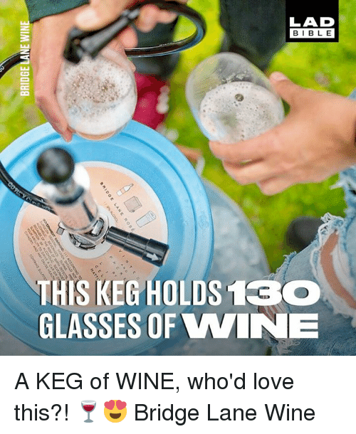 Dank, Love, and Wine: LAD  BIBLE  THIS KEG HOLDS 1CO  GLASSES OF WINNE A KEG of WINE, who'd love this?! 🍷😍  Bridge Lane Wine