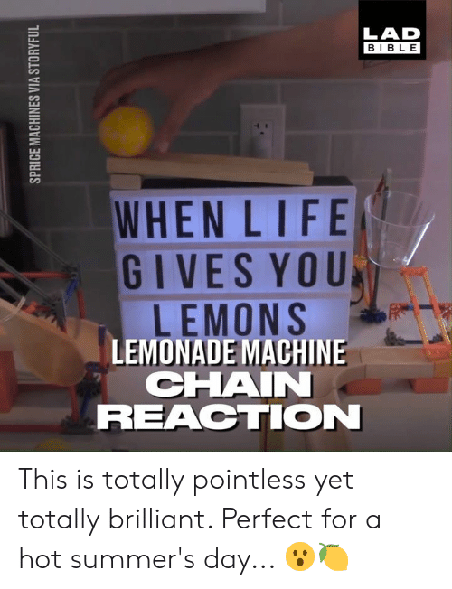 lemons: LAD  BIBLE  WHENLIFE  GIVES YOU  LEMONS  LEMONADE MACHINE  CHAI  REACTION This is totally pointless yet totally brilliant. Perfect for a hot summer's day... 😮🍋