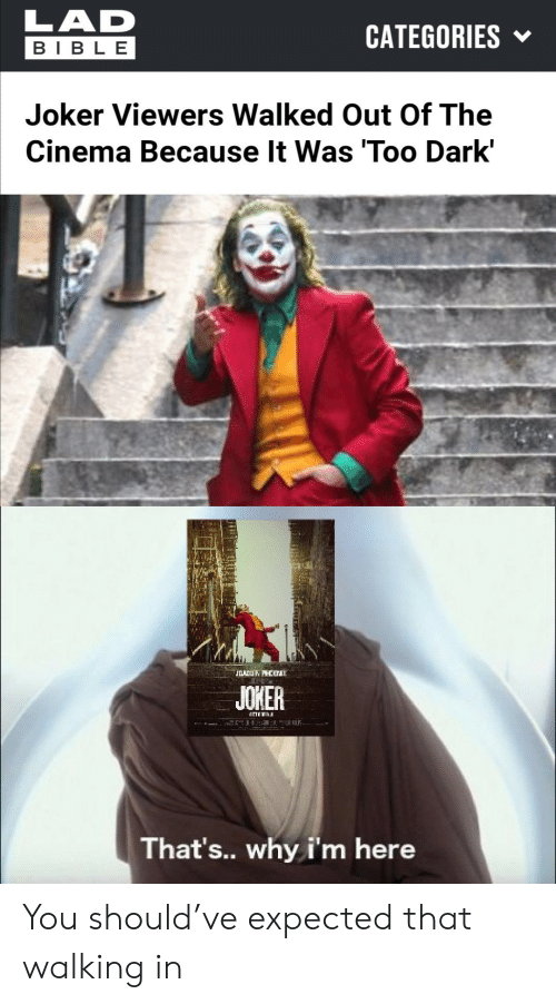 cinema: LAD  CATEGORIES  BIBLE  Joker Viewers Walked Out Of The  Cinema Because It Was 'Too Dark'  JOADUN PHCB  JOKER  That's.. why i'm here You should've expected that walking in