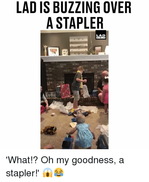 stapler: LAD IS BUZZING OVER  A STAPLER  LAD  BIBLE 'What!? Oh my goodness, a stapler!' 😱😂