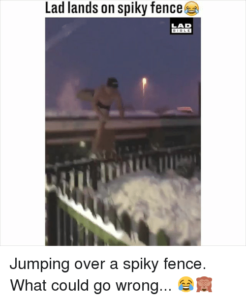 Memes, Bible, and 🤖: Lad lands on spiky fence  LAD  BIBLE Jumping over a spiky fence. What could go wrong... 😂🙈
