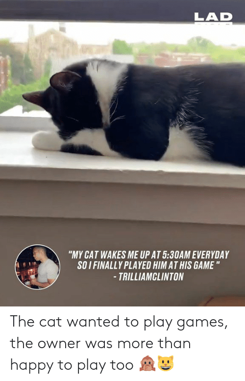 """soi: LAD  """"MY CAT WAKES ME UP AT 5:30AM EVERYDAY  SOI FINALLY PLAYED HIM AT HIS GAME """"  -TRILLIAMCLINTON The cat wanted to play games, the owner was more than happy to play too 🙊😺"""